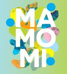 MaMoMi - Interaktywna instalacja