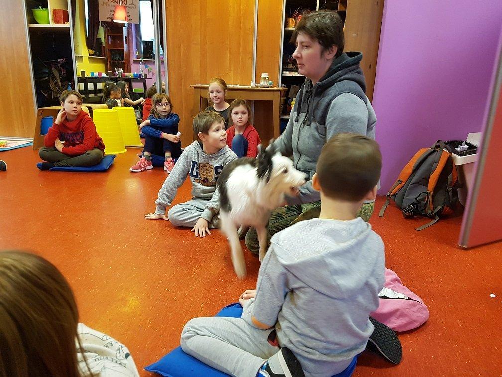 Jak opiekować się psem? Warsztaty z tresowaną sunią