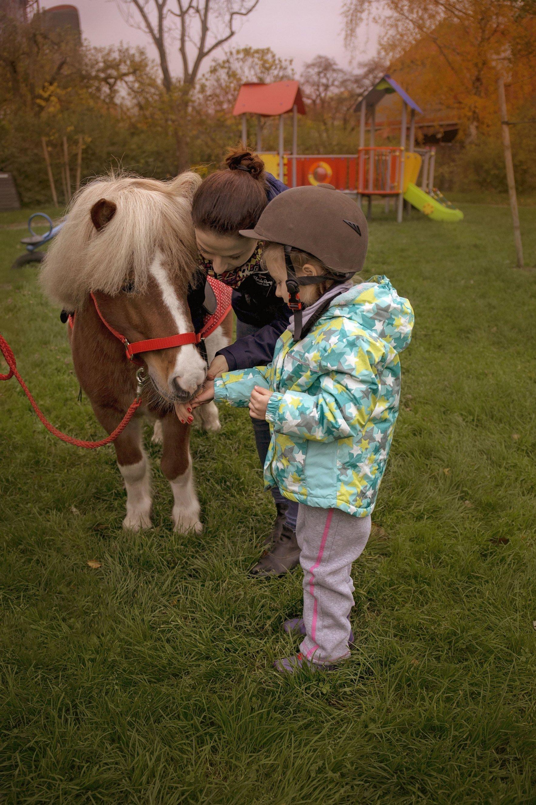 hipoterapia dla dzieci w przedszkolu, kucyk