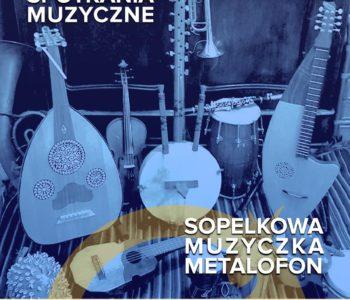 Sobotnie spotkania muzyczne: Sopelkowa muzyczka - Metalofon