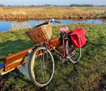 Przejrzyj rower na wiosnę
