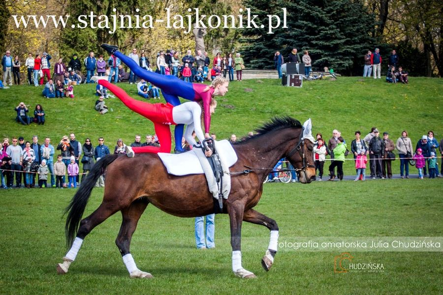 Zajęcia woltyżerki na koniu w Stajni Lajkonik