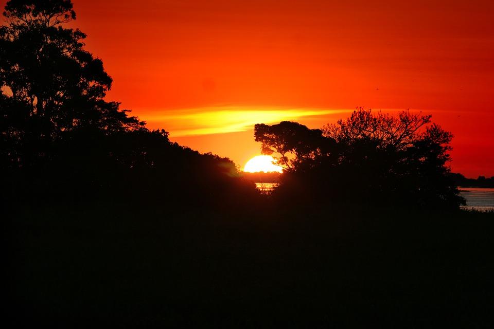 Leniwa niedziela z... Amazonią