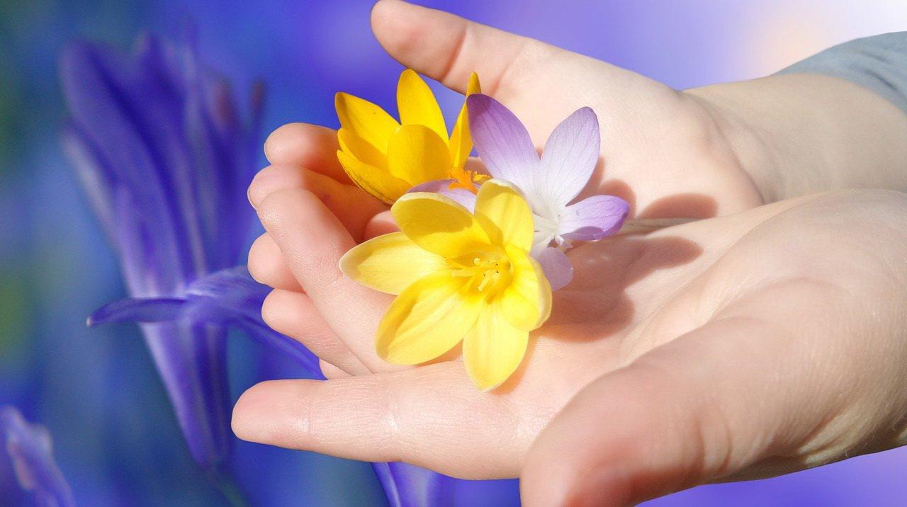 Najpiękniejsze składamy Pani życzenia, wierszyki i życzenia na Dzień Nauczyciela