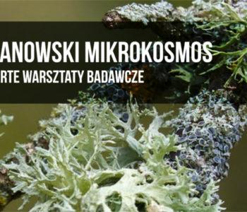Warsztaty badawcze dla wszystkich | park wilanowski
