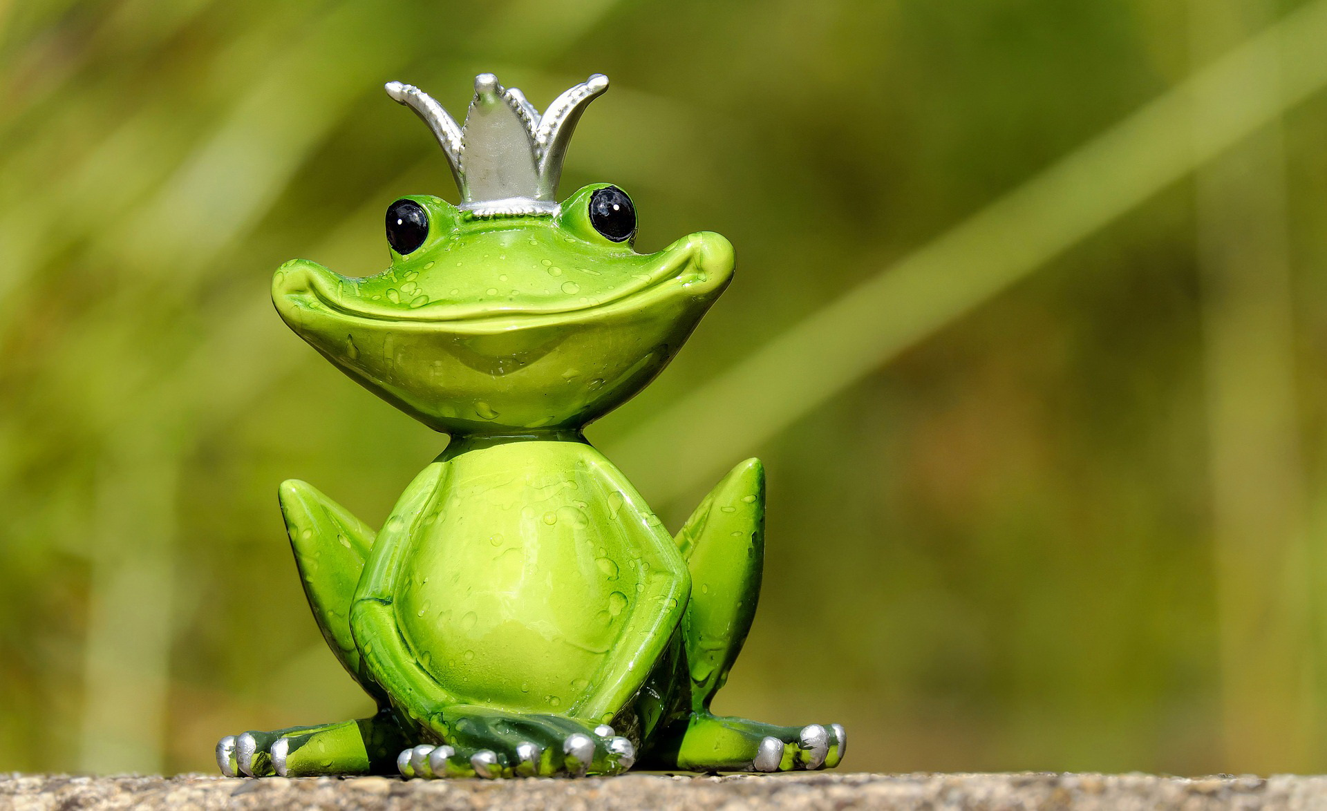 pewna żaba była słaba wierszyk dla dzieci