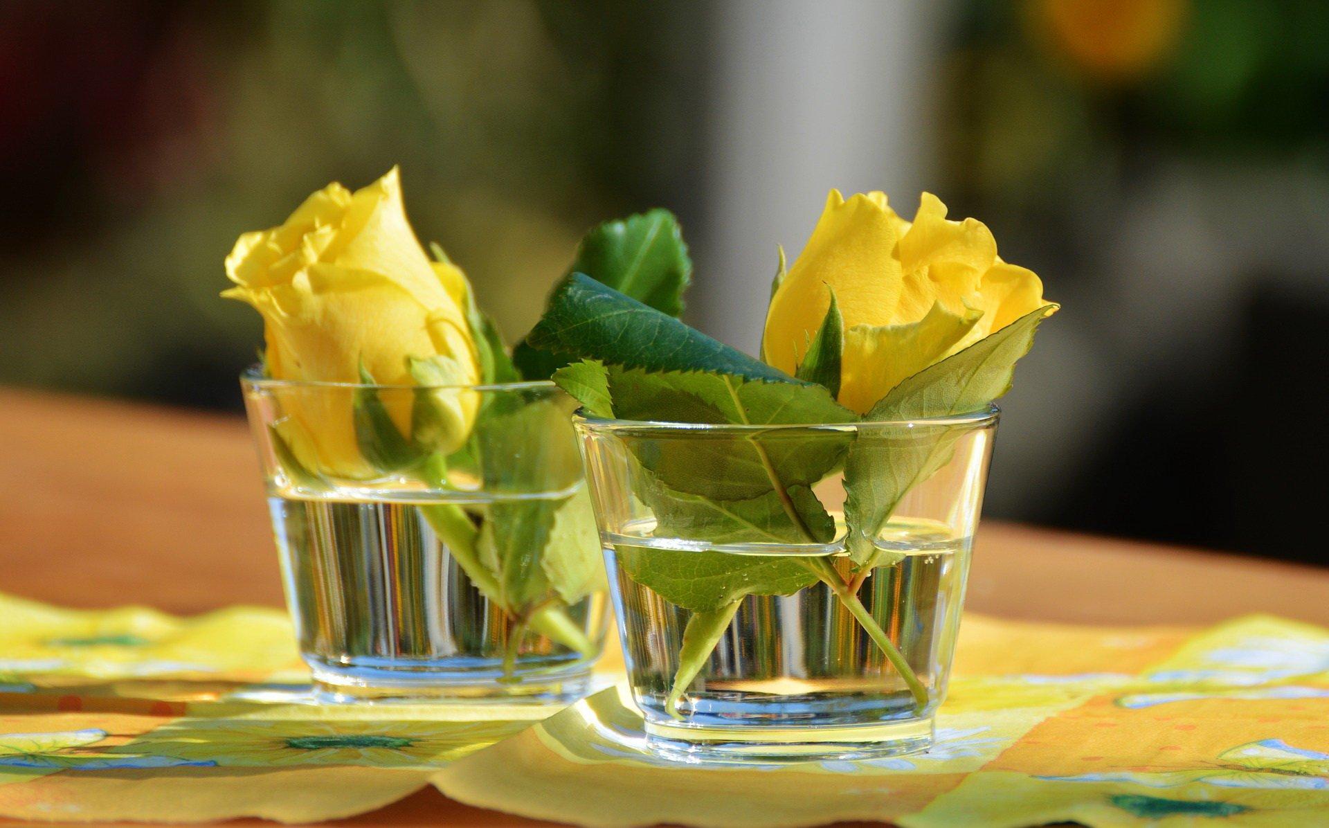 Dwie róże, smutne wiersze miłosne dla dzieci