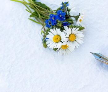 Bukiety jesiennych kwiatów