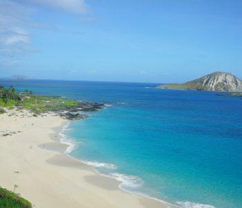 Leniwa niedziela z... Hawajami