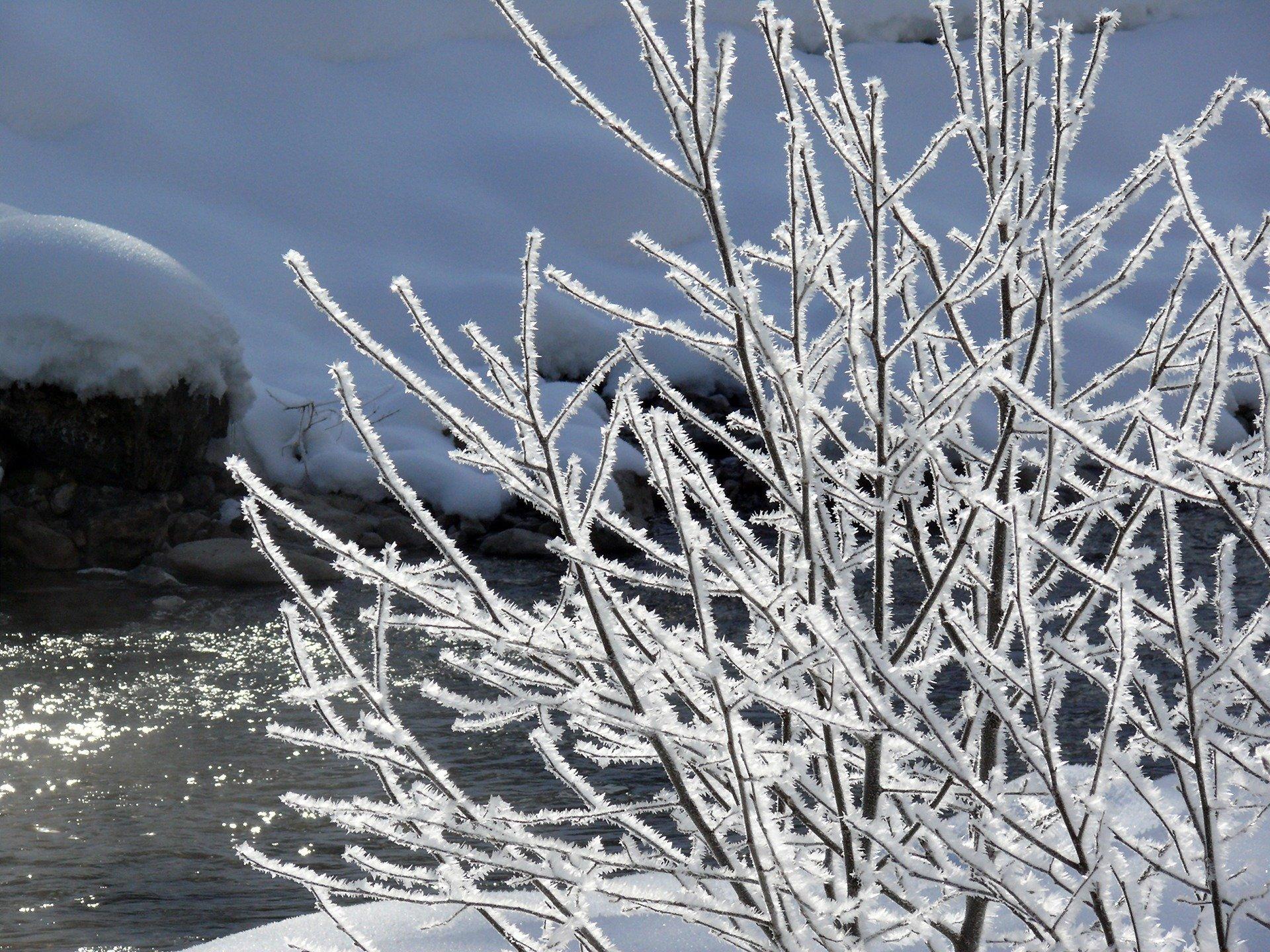 Lecą Z Nieba Płatki śniegu Zimowy Wierszyk Dla Dzieci