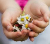 życzenia na Dzień Matki, Ile kwiatków w maju