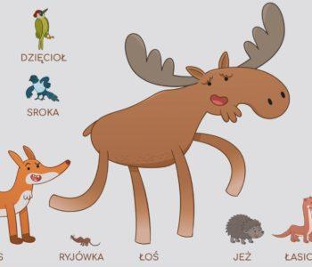 Poznawaj las z Żubrem Pompikiem