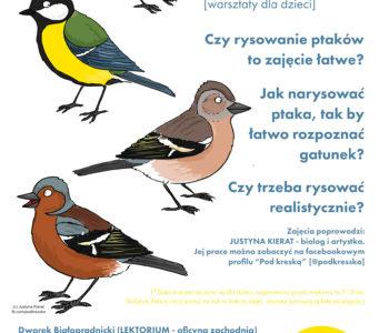 Ptaki – jak je rozpoznawać? Warsztaty przyrodnicze ze Szkiełkiem i Okiem