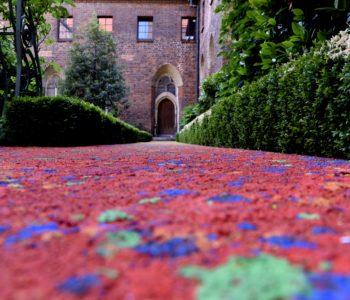 Zapaskowani – wakacje ze sztuką Leona Tarasewicza w Muzeum Architektury
