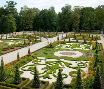Król ogrodnik | bezpłatne warsztaty przyrodnicze w parku wilanowskim