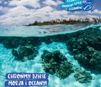8 czerwca. Światowy Dzień Oceanów
