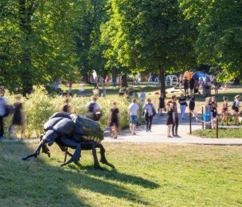 Pachnica, Biegacz, Zagłębek zagoszczą w parku Starego Browaru