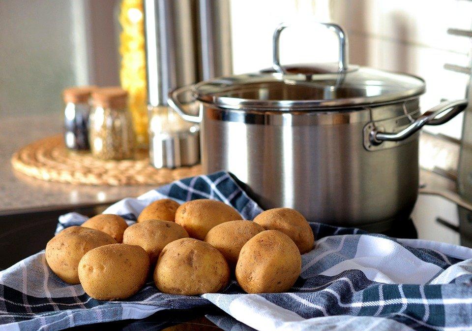 Sekretne życie ziemniaka - warsztaty ogrodniczo-kulinarne dla rodzin