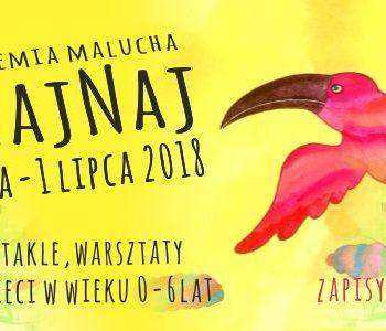 Festiwal RAJ NajNaj – Letnia Akademia Malucha. Rybnik