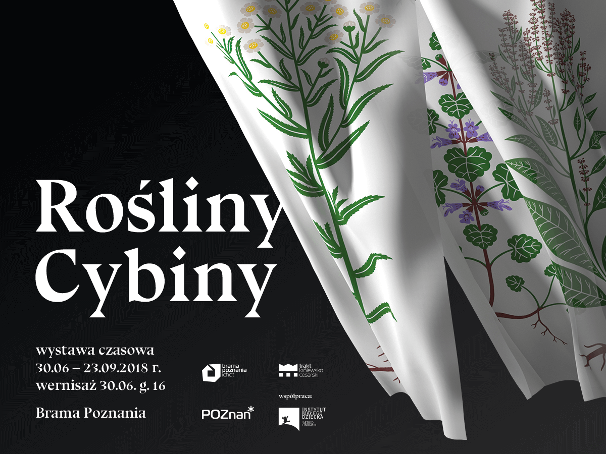 Rośliny Cybiny - wystawa czasowa w Bramie Poznania