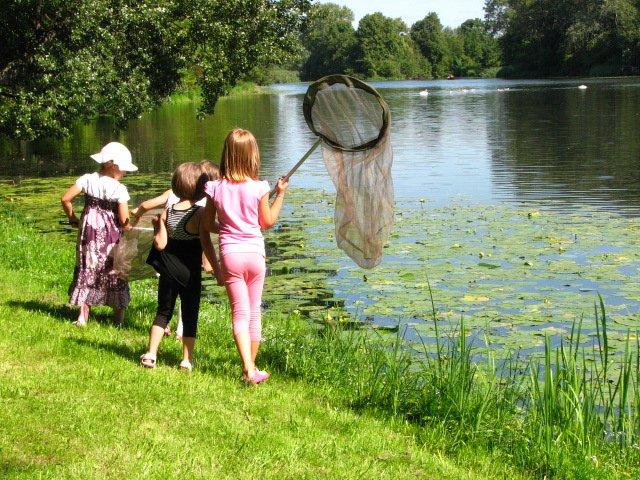 Zielona wyprawa | bezpłatne warsztaty przyrodnicze w parku wilanowskim