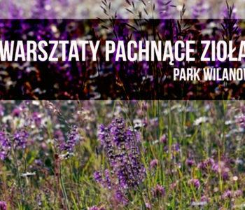 Ziołowe warsztaty dla rodzin w parku wilanowskim