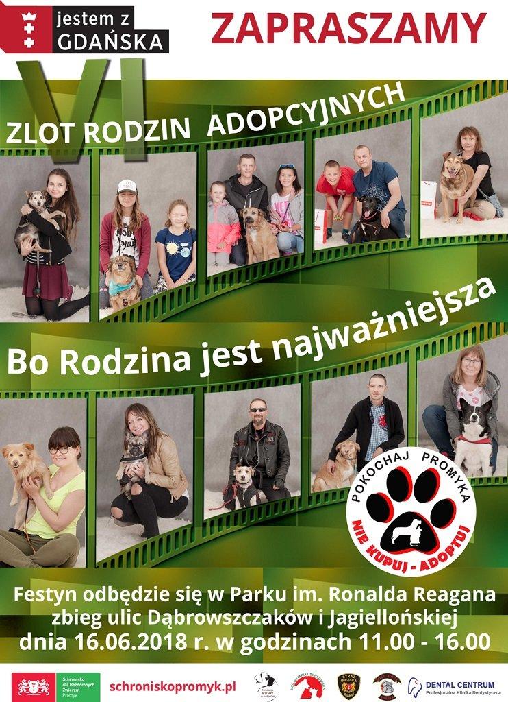 Zlot rodzin adopcyjnych podopiecznych Schroniska Promyk