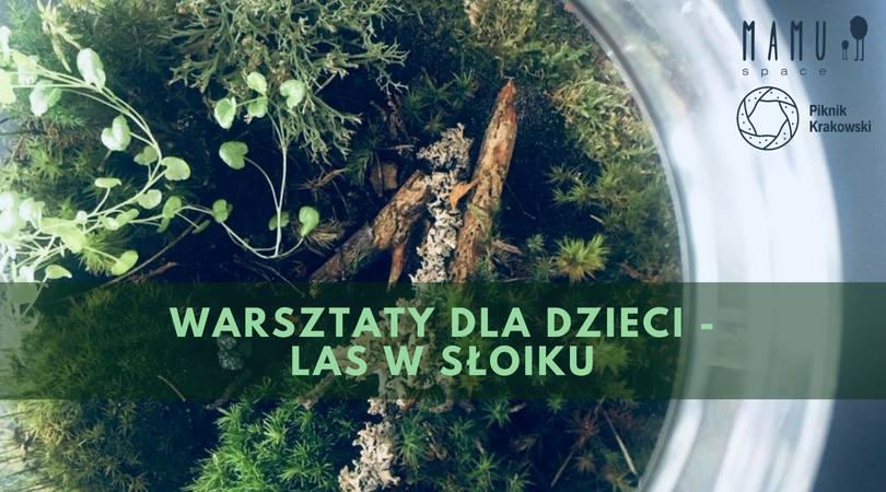 Las w parku - warsztat tworzenia lasów na Pikniku Krakowskim