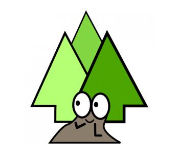Zmysły w Lesie