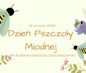 Dzień Pszczoły Miodnej w Śląskim Ogrodzie Zoologicznym