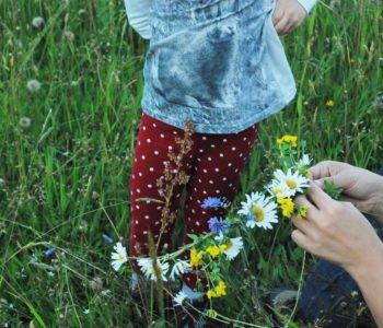 Cykl wyjazdów  W Naturze Rodziny – rodzina, więź, przyroda