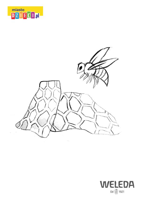 Pszczoła Pszczeli Wosk I Plaster Miodu Do Kolorowania