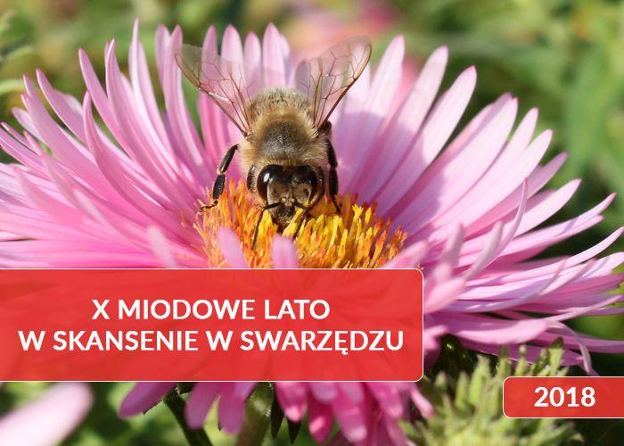 piknik pszczelarskiX Miodowe Lato w Skansenie
