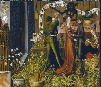 Rodzinne Niedziele w MNW: Tajemniczy świat roślin