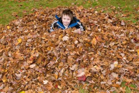 chłopiec w liściach