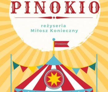 Pinokio w Teatrze Żelaznym w Katowicach