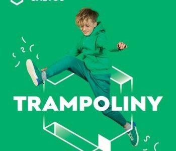 Zajęcia dla dzieci w parku trampolin