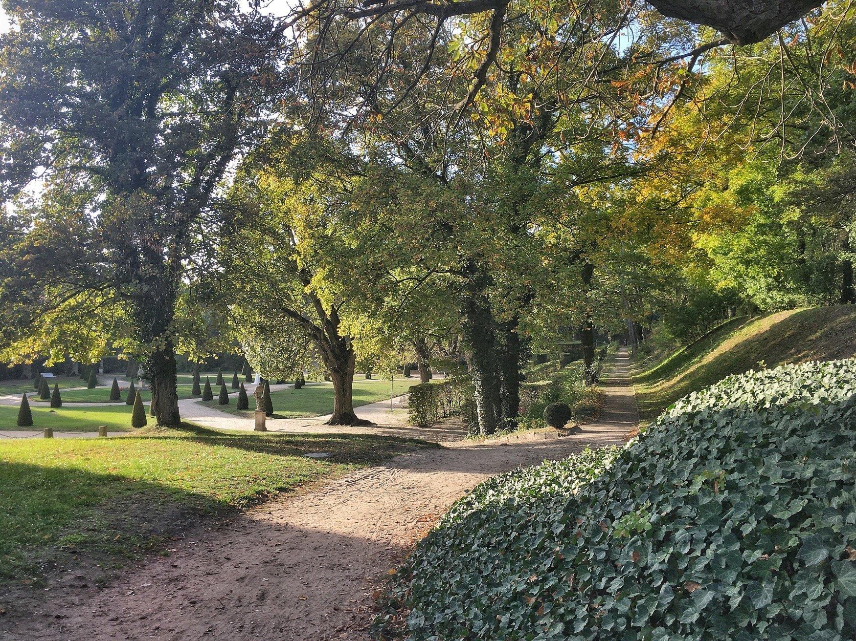 Jesienny spacer w Rogalinie
