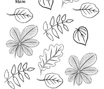 znajdź i policz jesienne liście - zabawa do druku dla dzieci