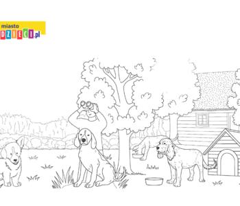 psy i czlowiek