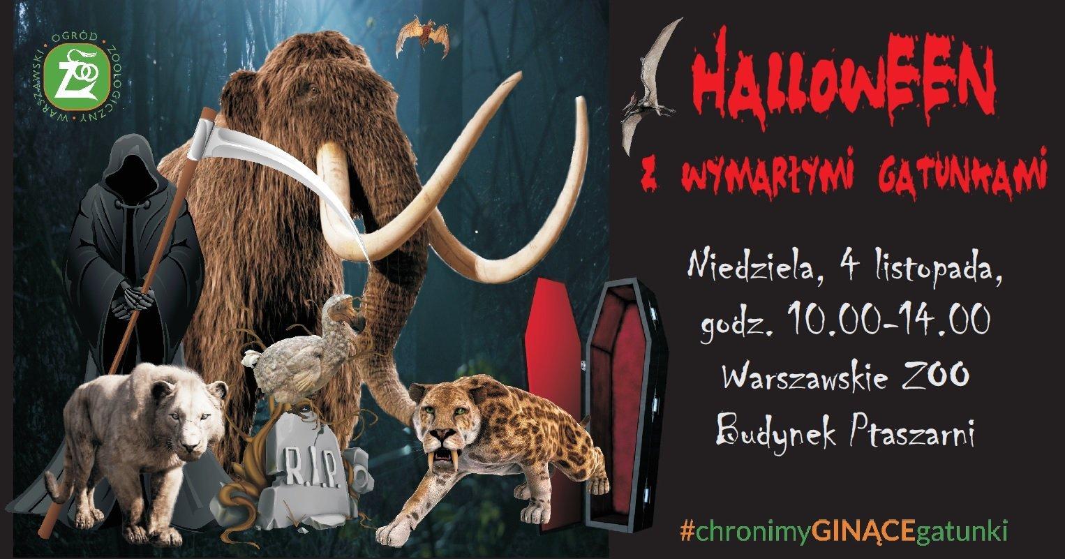 Halloween ze strasznymi zwierzakami i wymarłymi gatunkami