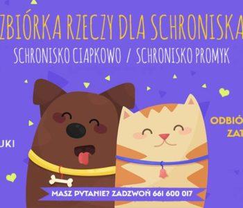 Zbiórka dla Ciapkowa i Schroniska Promyk w Sopocie - atrakcje dla dzieci w Trójmieście 2018