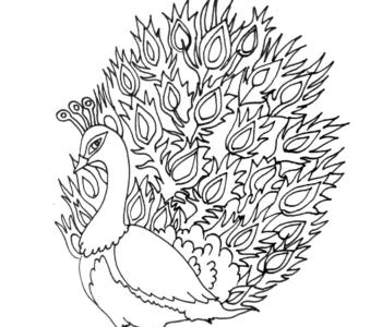 paw - kolorowanka dla dzieci