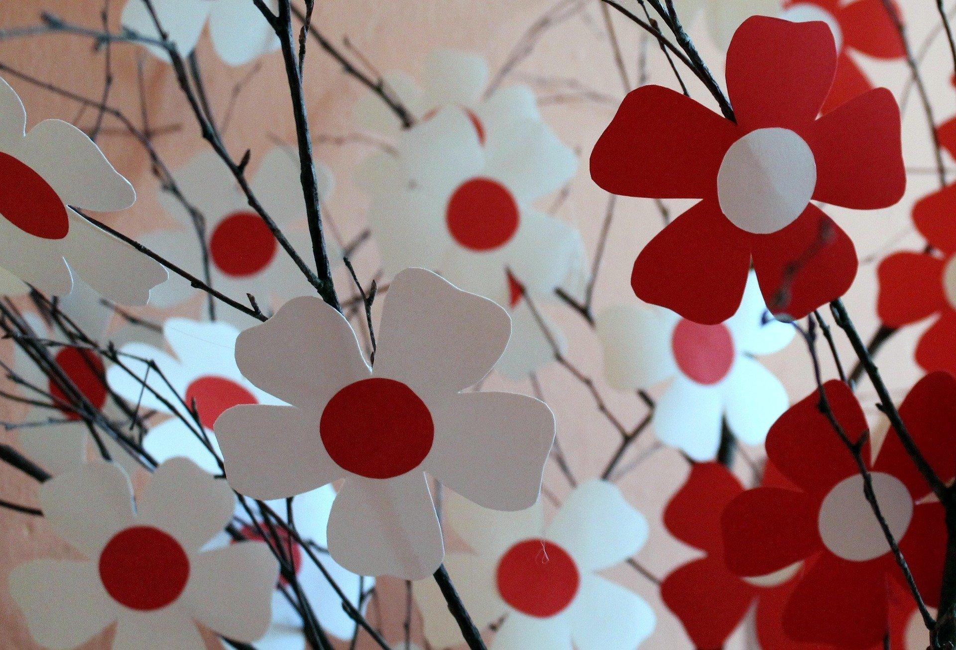 Biało czerwony Święto Niepodległosci 2018