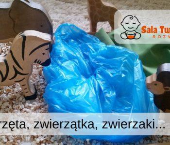 Zwierzęta, zwierzątka, zwierzaki… (dzieci 1-3 lata)