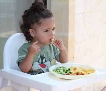 Żywienie dzieci po 1. roku życia – wykład