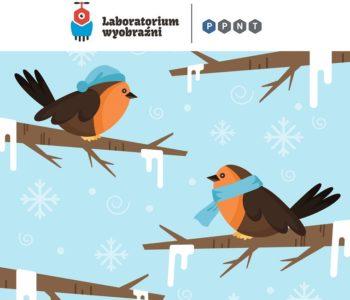 Jak przetrwać zimę? Przewodnik ekstremalny