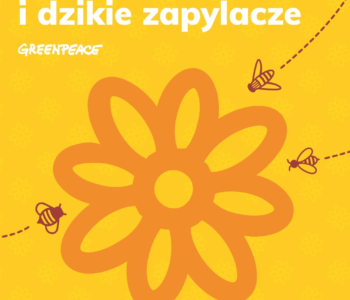 Chrońmy pszczoły - akcja Greeanpeace i warsztaty