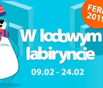 Ferie zimowe w Lodowym Labiryncie – Loopy's World Gdańsk