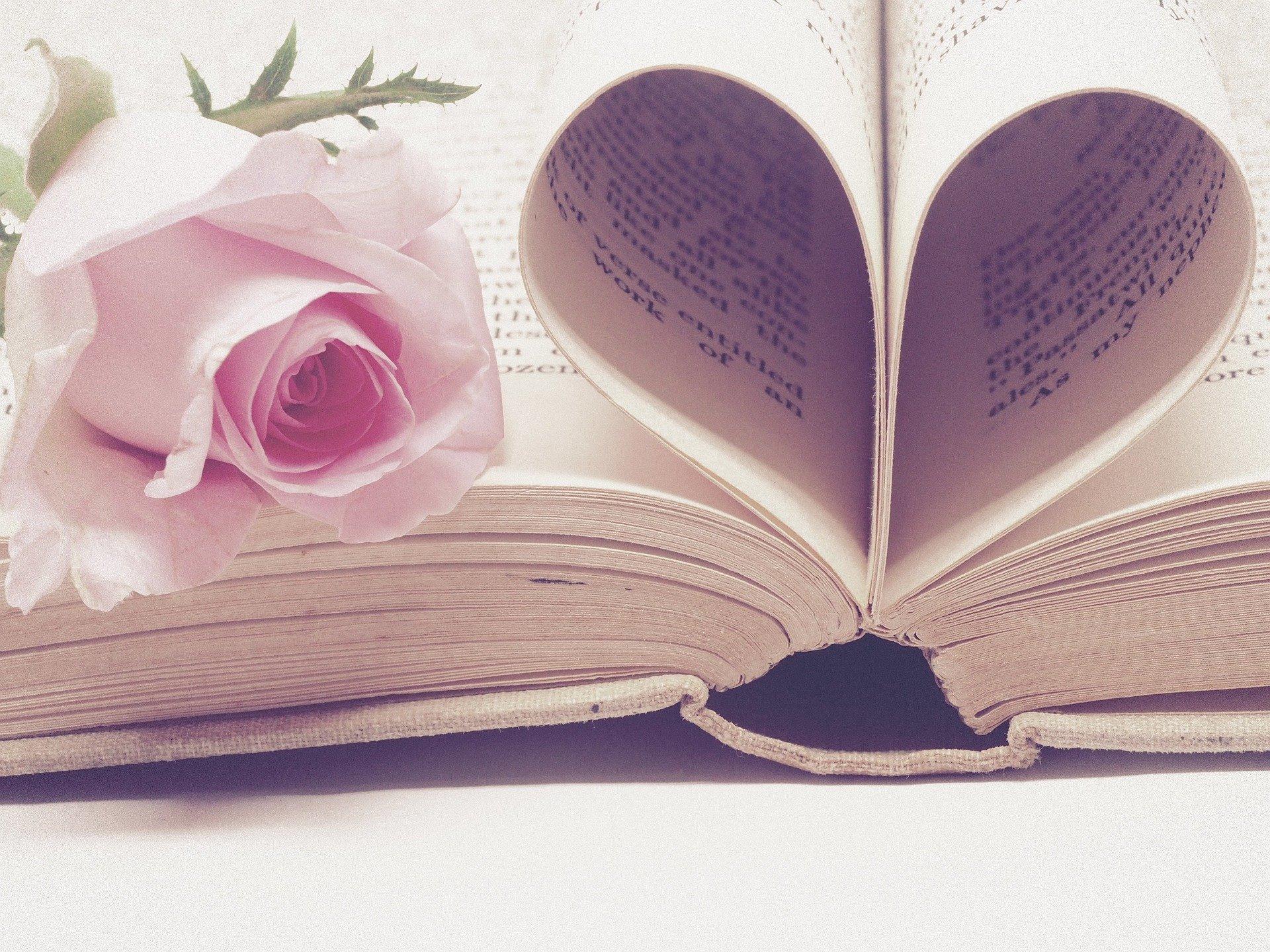 Walentynki - Święto Zakochanych 14 lutego pixabay